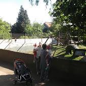PEU bezoek aan de Olmense zoo