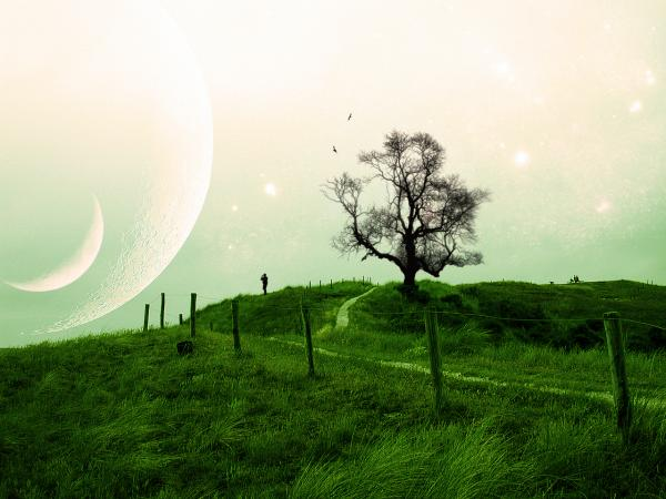 Silent Place Of Dream, Magical Landscapes 3