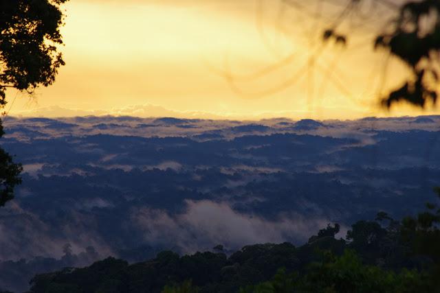 Vue vers le nord-ouest au coucher du soleil, piste de Coralie, 2 novembre 2012. Photo : J.-M. Gayman