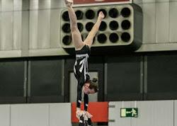 Han Balk Fantastic Gymnastics 2015-9202.jpg