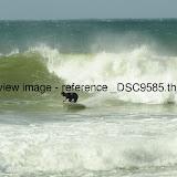 _DSC9585.thumb.jpg