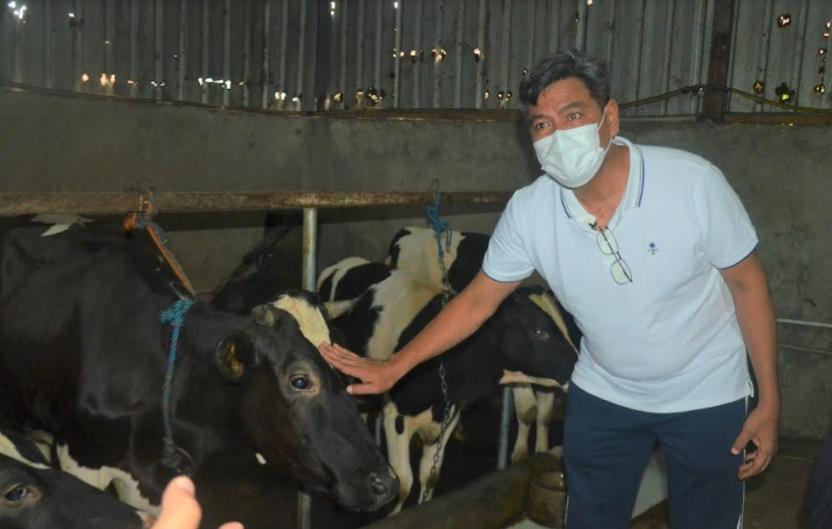 Kemenperin Pacu Produktivitas Industri Pengolahan Susu