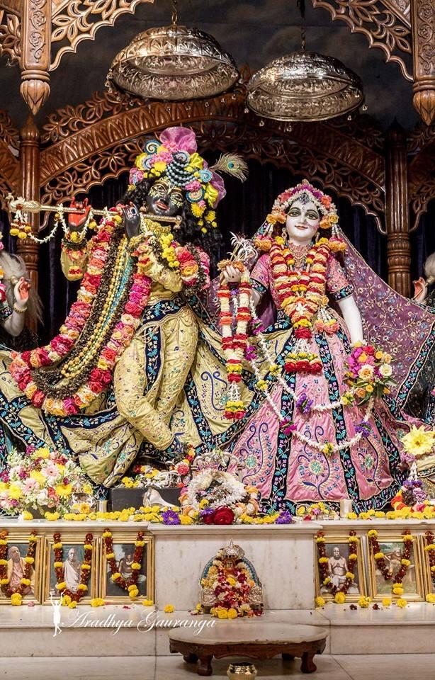 ISKCON Mayapur Deity Darshan 02 Feb 2016 (39)