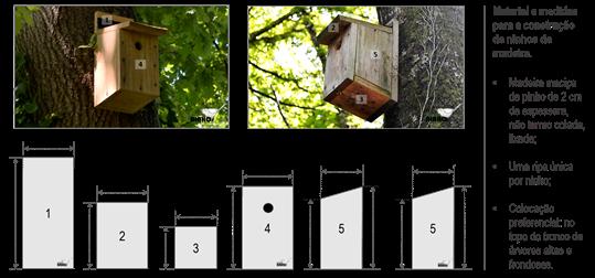 Arquitetura dos ninhos - Projeto Ninhos ESL 2017.