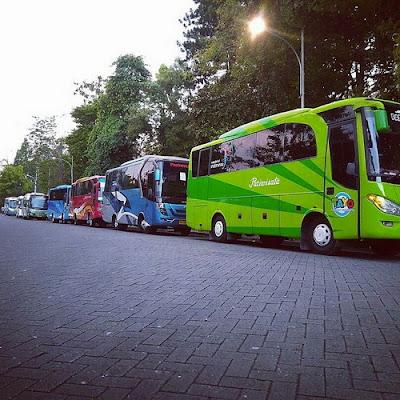 Bus Wisata Jogja Tujuan Kampus Peternakan UGM