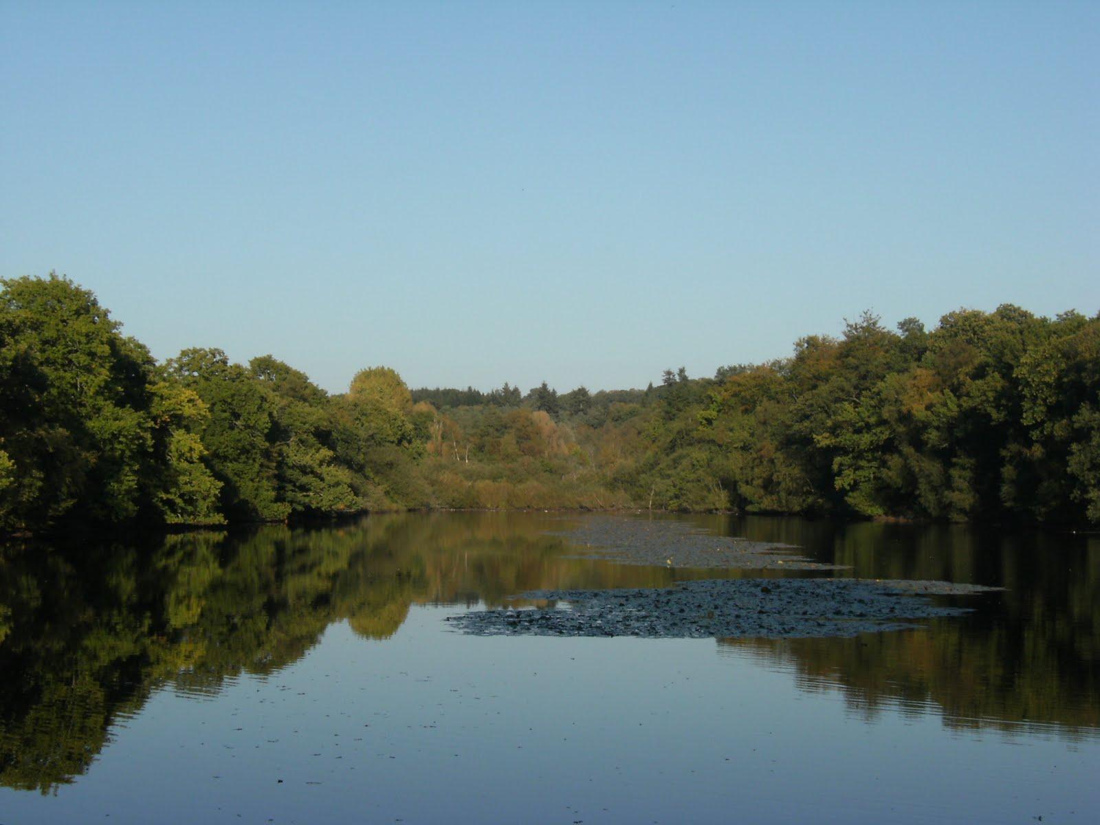 DSCF0028 Broadhurst Lake