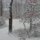 First Snow - 2009