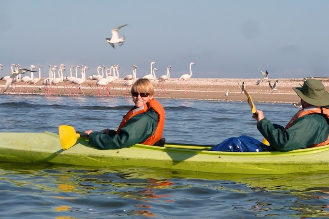 Kayaking off Pelican Point in Namibia
