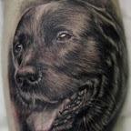 pt00324-Dog_portrait_by_Remistattoo.jpg