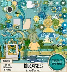 bluegrass_03