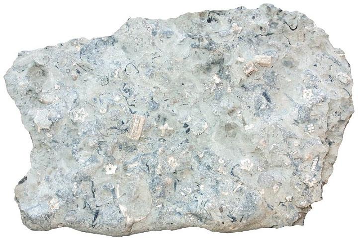 limestone sedimentary rocks. Black Bedroom Furniture Sets. Home Design Ideas
