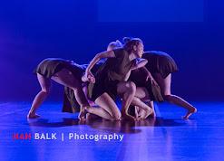 Han Balk Voorster Dansdag 2016-4409.jpg