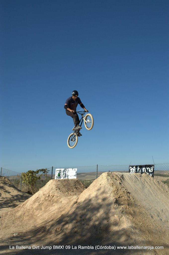 Ballena Dirt Jump BMX 2009 - BMX_09_0043.jpg