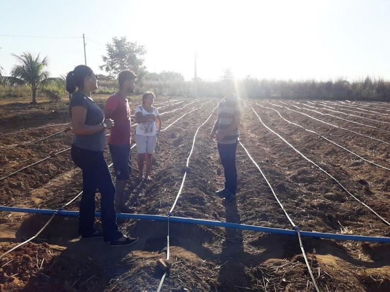 Agricultura_14