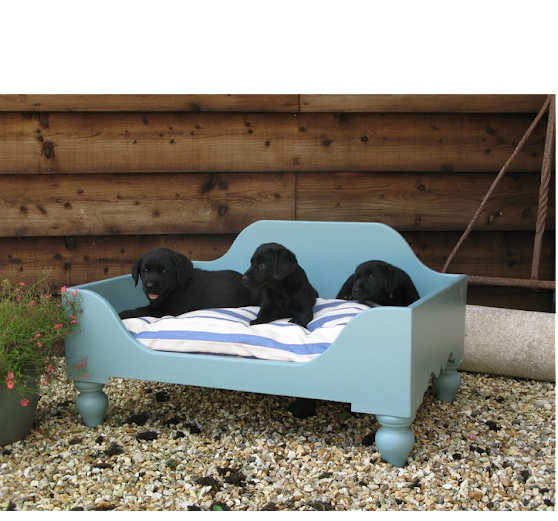 Luxury Raised Wooden Dog Beds | Stylish Wooden Dog Beds | Chelsea Dogs