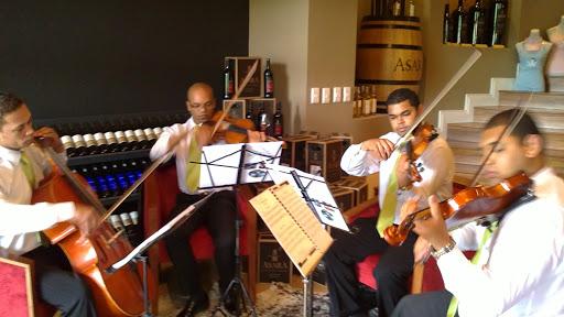 play4u live musician hire