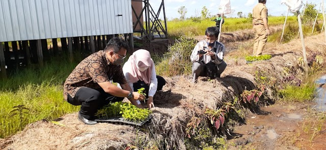 Dukung Petani Cabai Hiyung, Bank Kalsel Ajak Gunakan Sistem Vertigasi Kapiler