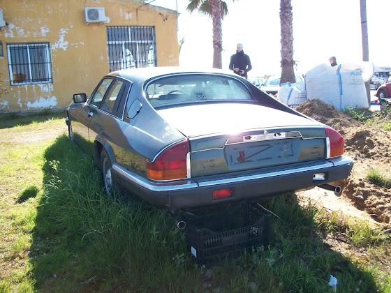 Otro cacharro mas jaja VW Carocha 100_1872