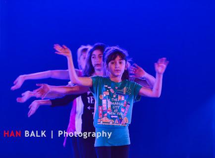 Han Balk Voorster Dansdag 2016-3902.jpg