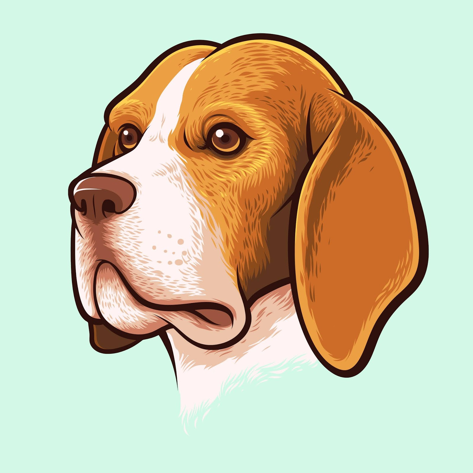 Beagle Dog Portrait.jpg Free Download Vector CDR, AI, EPS and PNG Formats