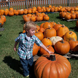 Pumpkin Patch 2015 - 100_0449.JPG