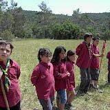 Sortida Reforestació 2007 - PICT1539.JPG