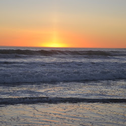 Manresa State Beach's profile photo