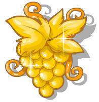 uva dourada colheita feliz