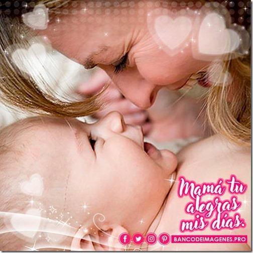 dia de la madre 2018 (18)