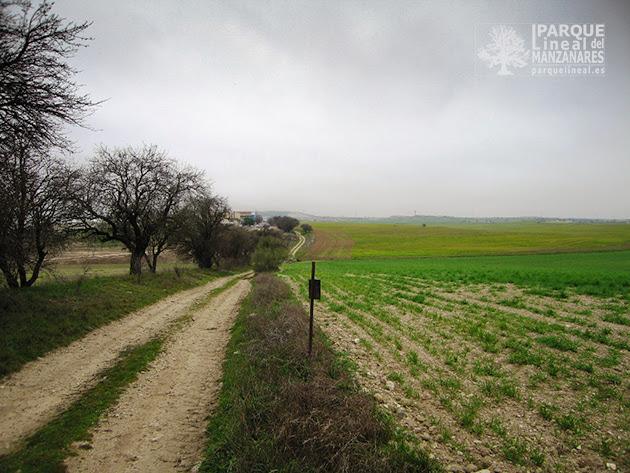 Linde Camino Valdeoreja hacia el Sur