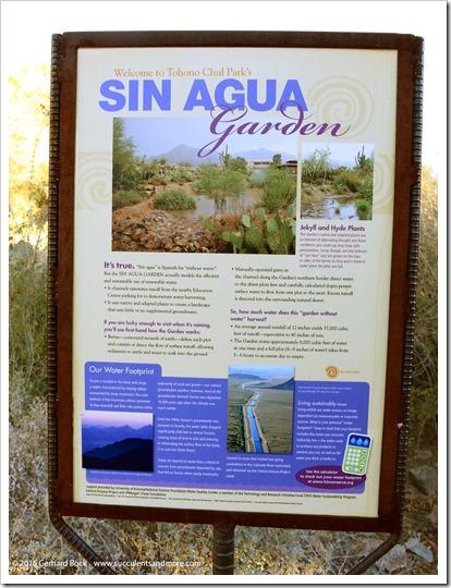151230_Tucson_Tohono-Chul-Park_0018