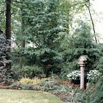 images-Landscape Design and Installation-lnd_dsn_21.jpg