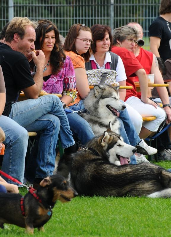 20100914 Sommerfest - DSC_4358.JPG