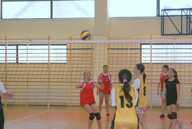 Zawody siatkarskie dziewczat 1 marca 2011 - DSC09381_1.JPG