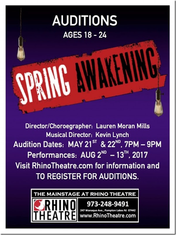 AUDITION-SPRING-AWAKENING-480x621