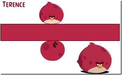 angry_bird cumpleaños (4)