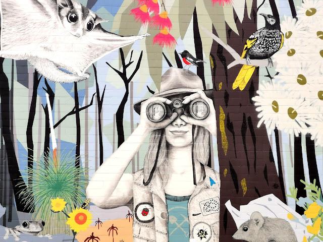 Chiltern Street Art by Kirrily Anderson