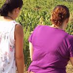 PeregrinacionAdultos2012_031.JPG