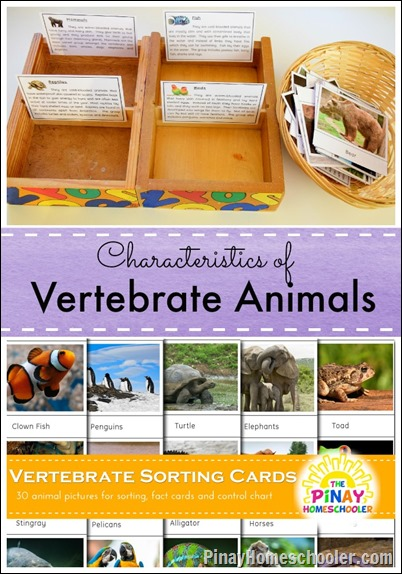 Classifying Vertebrate Animals