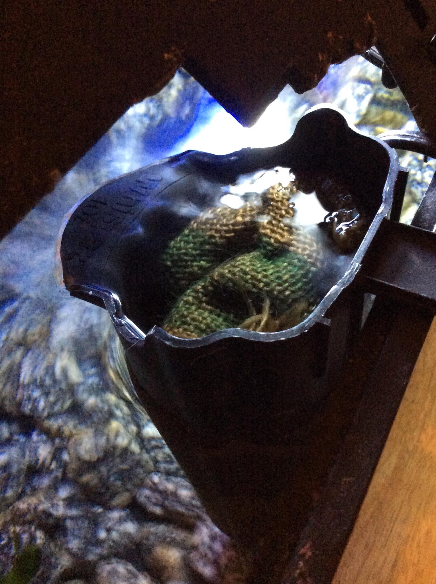 Adventurous homemaking diy fish tank filter cartridges for Fish tank filter homemade