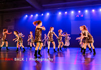 Han Balk Voorster Dansdag 2016-3637-2.jpg