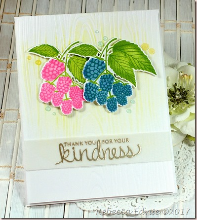 c4c 18 berry kindness