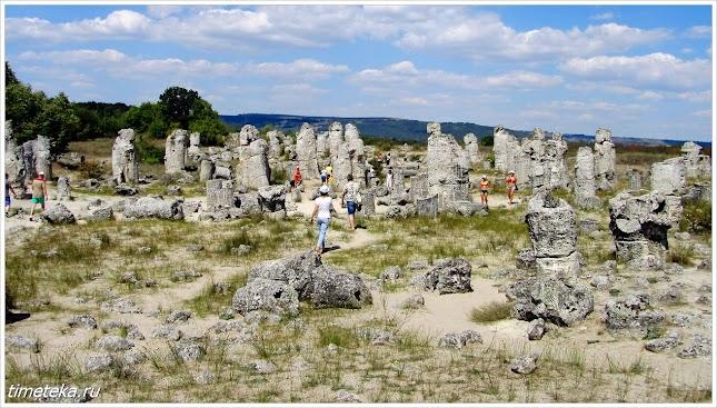 Каменный лес близ Варны. Болгария