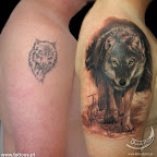cover-up de lobo no ombro.jpg