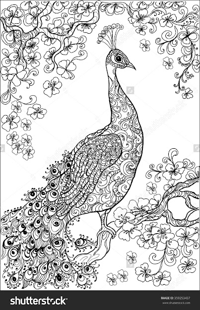 Coloring Book Pages Peacock  Flower Garden