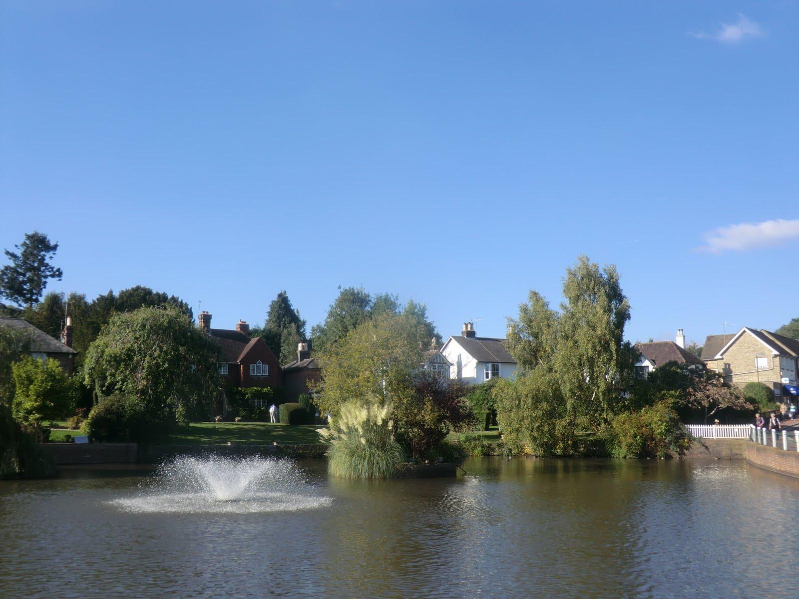 CIMG0659 Lindfield village pond