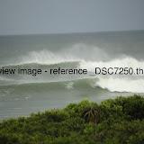_DSC7250.thumb.jpg