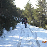 Sortida Pla dErola Pioners 2010 - DSCN0019.JPG