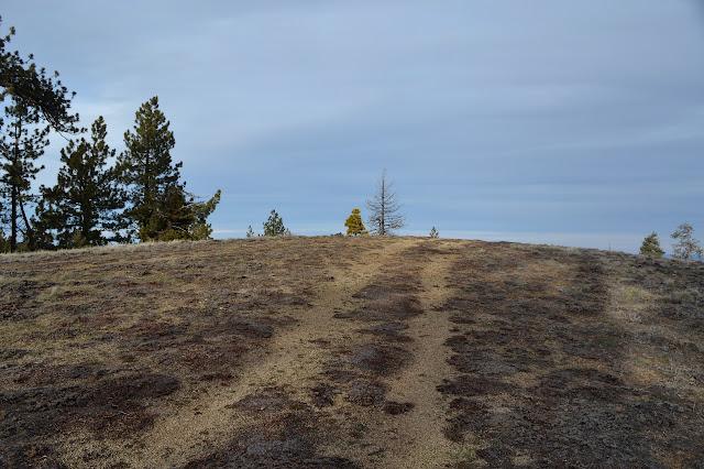 peak of Brush Mountain