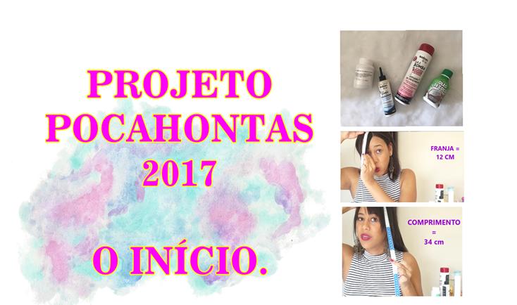 Projeto pocahontas 2017